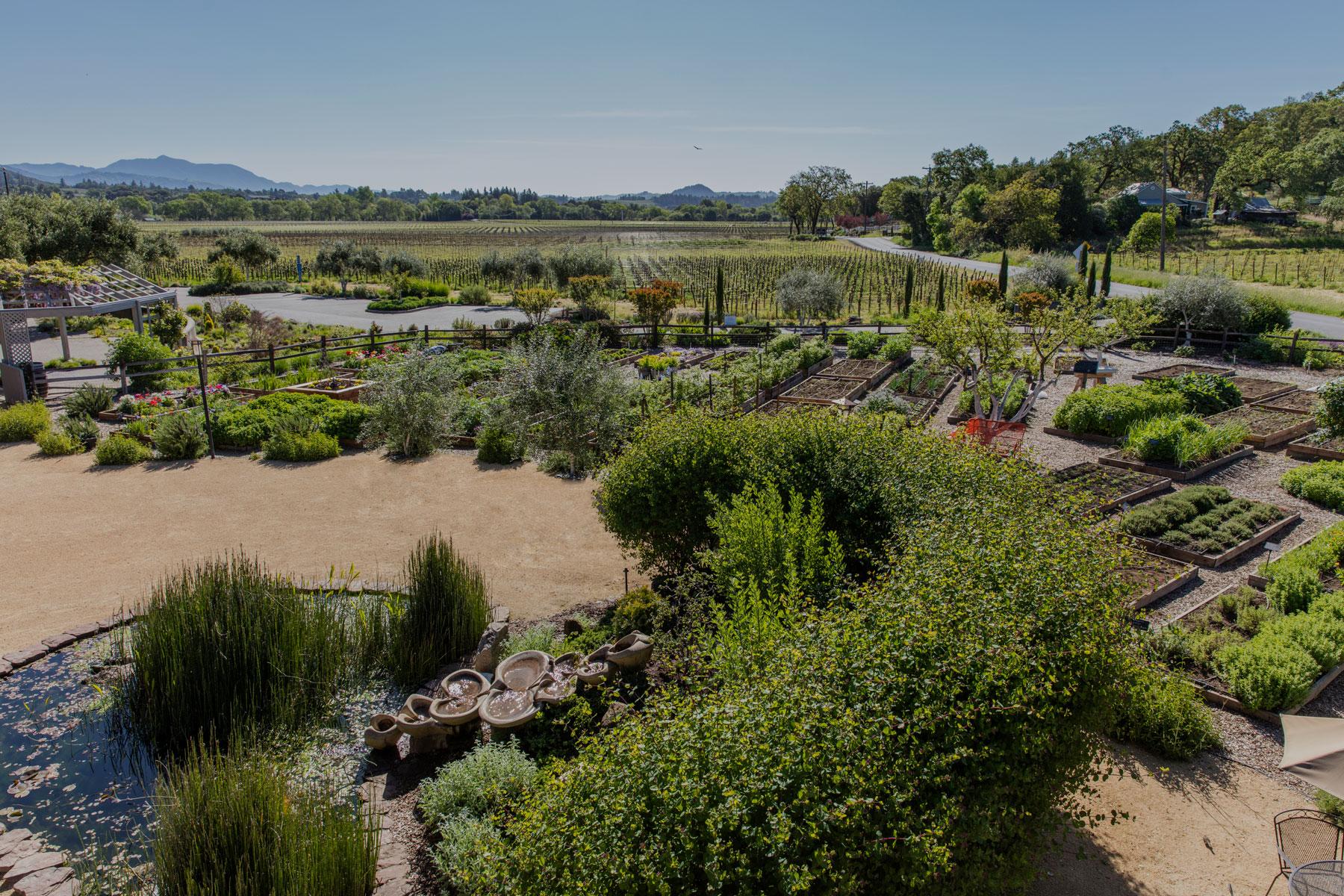 Quivira Winery Dry Creek Valley